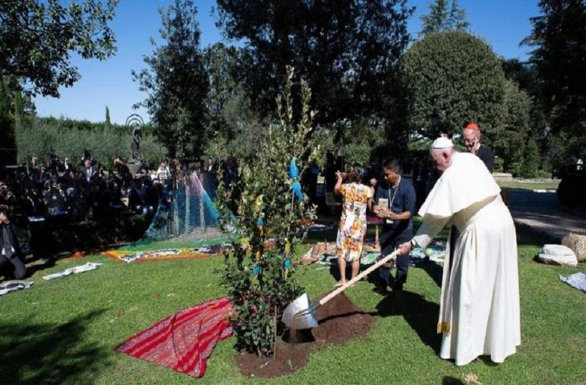 Đức Thánh Cha Phanxicô Trồng Cây Tại Vườn Vatican