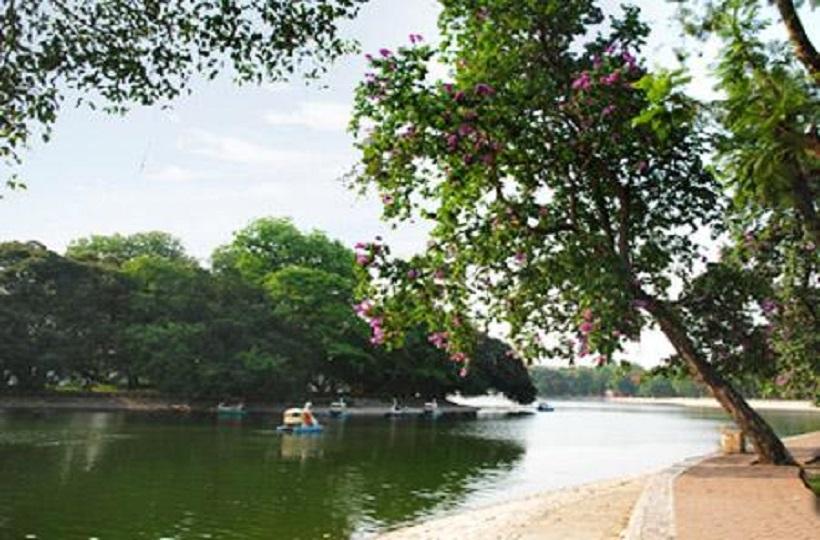 Caritas Việt Nam: Hãy Là Người Bảo Vệ Mẹ Đất