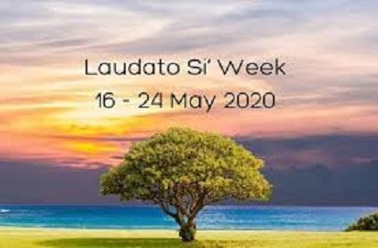 Đức Thánh Cha Phanxicô mời gọi tổ chức mừng Tuần Lễ Laudato Si từ ngày16 -24/5, 2020