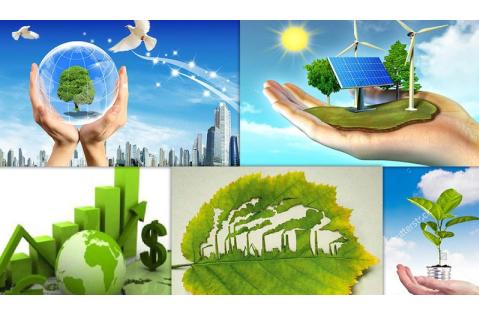Tôn giáo trong việc giải quyết vấn đề môi trường sinh thái
