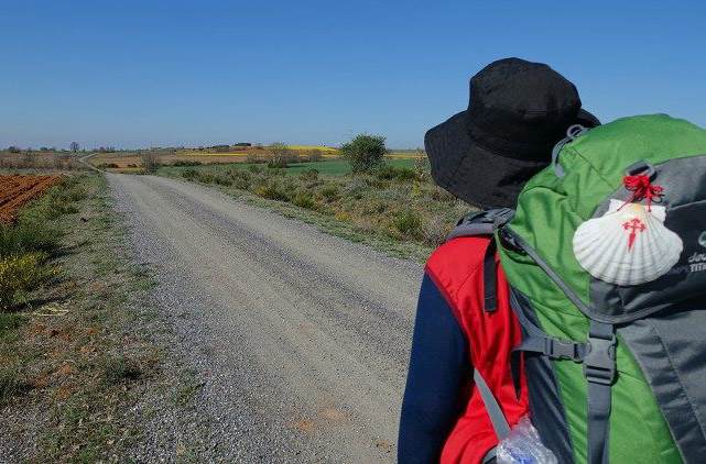 ĐTC Phanxicô khuyến khích bạn trẻ khuyết tật sau chuyến hành hương Camino de Santiago