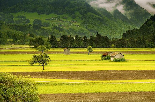 Toà Thánh kêu gọi hành động chung khẩn cấp về biến đổi khí hậu