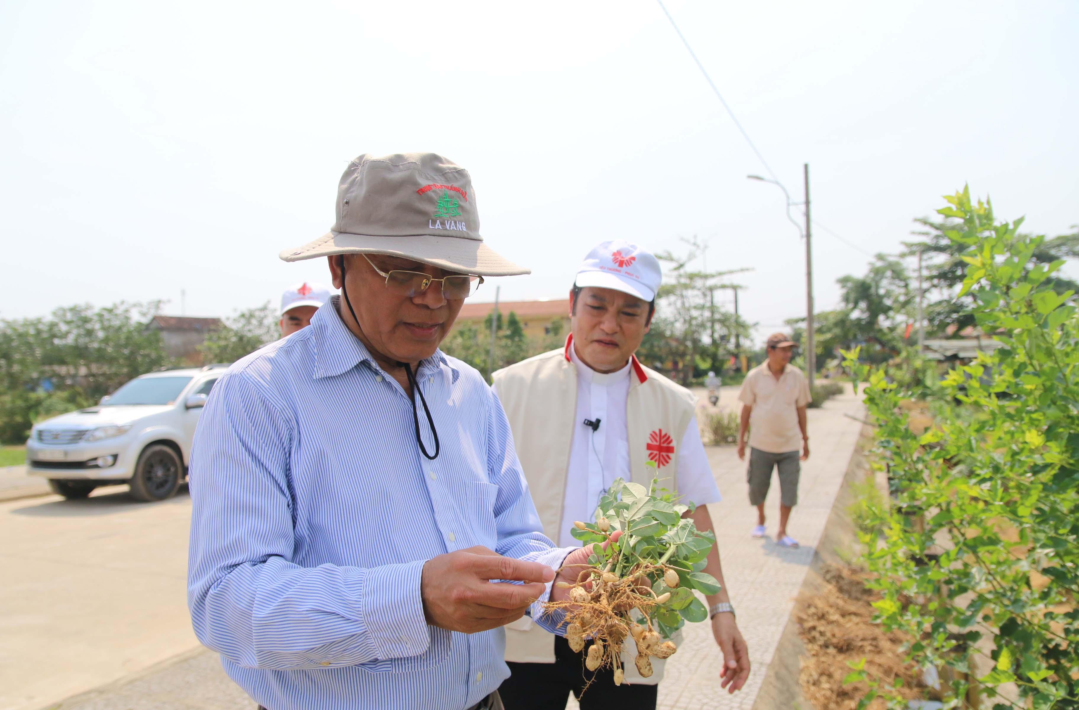 Caritas Việt Nam: Phóng Sự Hỗ Trợ Giống Cây Trồng, Vật Nuôi Sau Bão Lũ 2020 Tại TGP. Huế