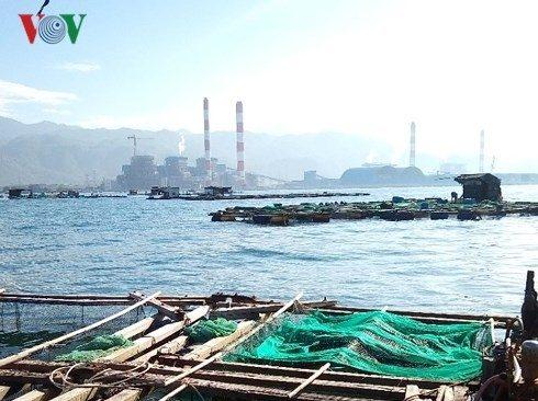 Công bố nguyên nhân cá chết hàng loạt gần nhiệt điện Vĩnh Tân: Ngư dân yêu cầu xét nghiệm lại
