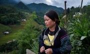 Cuộc tìm kiếm những cô dâu Việt bị bắt cóc sang Trung Quốc