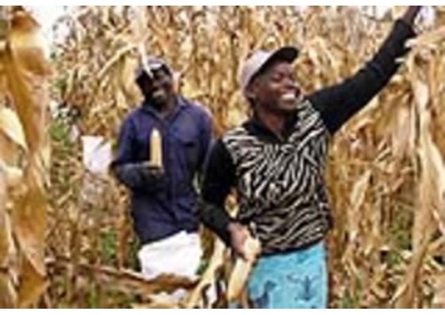 Cha Pierre Ruquoy, nhà truyền giáo ở Zambia trao ban cuộc sống vì Đức Kitô, vì Giáo Hội và cho người nghèo