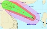 Phó Thủ tướng Hoàng Trung Hải: Chủ động cấm biển và sơ tán dân