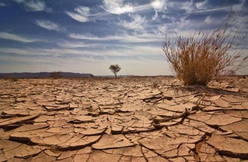 Nạn biến đổi khí hậu và cuộc sống của dân nghèo