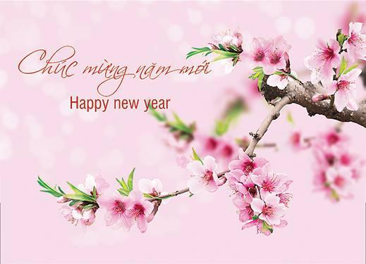 Caritas Việt Nam chúc mừng Năm Mới Ất Mùi 2015