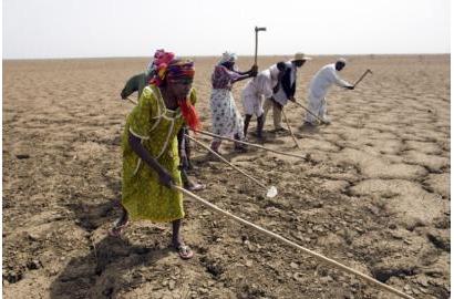 Các Cuộc Đàm Phám Của Liên Hiệp Quốc Về Biến Đổi Khí Hậu Phải Đưa Đến Kế Hoạch Cứu Lấy Hành Tinh
