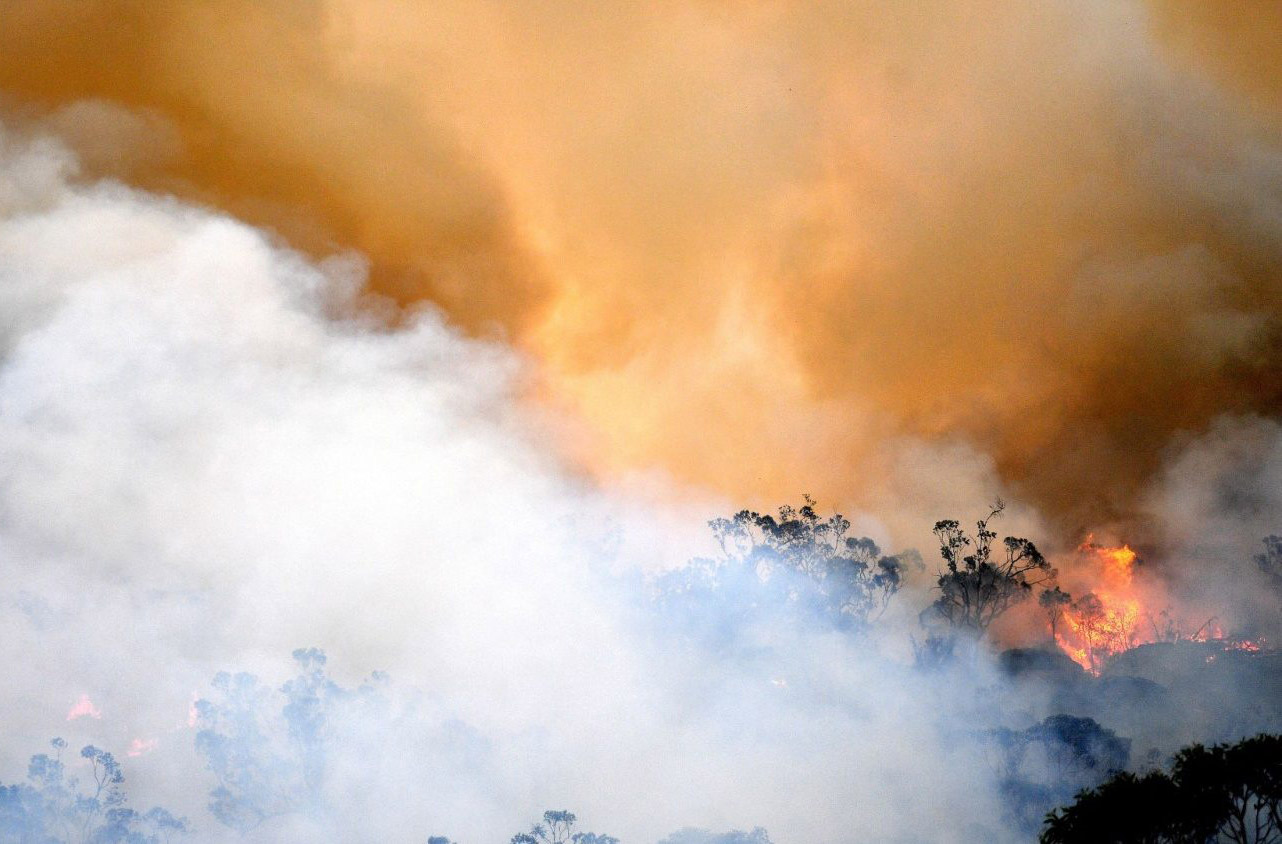 Các giám mục Úc kêu gọi hành động để bảo vệ trái đất và người nghèo