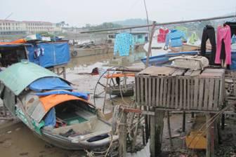 Caritas Hải Phòng thăm Xóm Chài Kiến An dịp Tết Nhâm Thìn