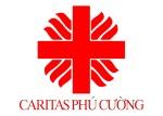 Kế hoạch hoạt động trong năm 2012 – Caritas Phú Cường